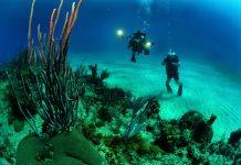 underwater video camera